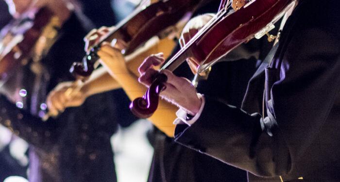 Närbild på tre violiner som spelas av oidentifierade violinister